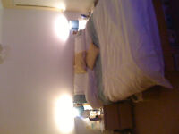 Single Room To Rent In Friendly House Share £320 per month