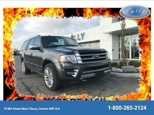 2017 Ford Expedition Platinum, Rear DVD, 22 inch wheels, Loaded!