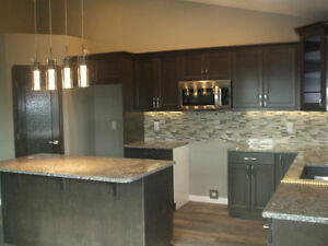 New Camrose Bilevel -Sorry Home Is Sold! Check out my other home Strathcona County Edmonton Area image 5