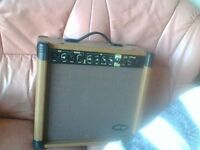 40 watt stag amp for sale