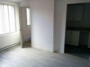 Appartement 1 1/2 540$