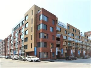 New Spacious Condo 3 1/2 for rent Downtown/Griffintown