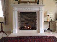 Infinity 880 Gas fire basket - as new