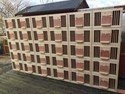 4x Pigeon Widowhood Style Nest Boxes