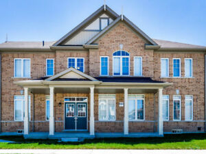 Mississauga Road Mayfield Road Detached Lease Rent