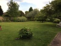 Gardener needed in Hereford City for weeding, hedge cutting, mowing & general maintenance