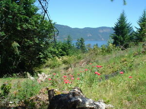 Ocean view lot Maple Bay Vancouver Island