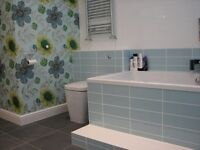 multi skill plumber, carpenter, tiler, decorator, full bathroom & kitchen fitting