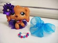 LITTLEST PET SHOP-#716 COCKER SPANIEL DOG Silkstone Ipswich City Preview