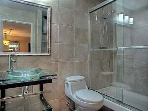 LUXURIOUS 1 Bedroom Condo available for rent
