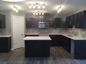 Brand New Nearly 1900 sq. ft. Home for $419,500 in Aspen Trails!