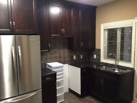 Brand new walk-out 2 bedroom basement suite in Strathmore