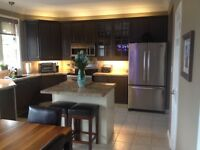Kitchen Cabinet Spray Painters Chatham - Kent