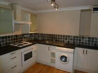 Large 1 bedroom flat available September