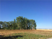 FULLY SERVICED LOTS FOR SALE LORETTE MANITOBA -SETTLERS LANDING