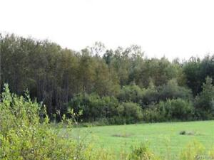 80 Acres of Land for Hay and Hunting