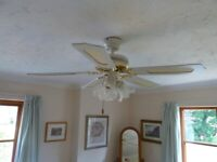 Richmond White Ceiling Fan with lights
