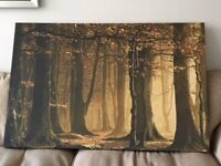 Large woodland scene canvas