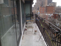 Nice 31/2-Lease transfer from March 1st- near Mcgill