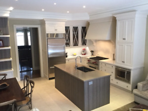 Custom high quality kitchen incl caesarstone counters