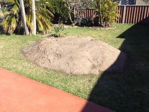 Soil - sandy loam Lake Illawarra Shellharbour Area Preview