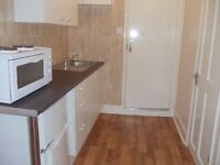 MUST SEE! PRIVATE GARDEN STUDIO FLAT, BILLS INCLUDED N22, PICCADILLY LINE, WOOD GREEN, TURNPIKE LANE