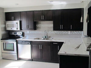 ROOMS 4 RENT in GORGEOUS MODERN OPEN CONCEPT RENOVATED LUX CONDO London Ontario image 1