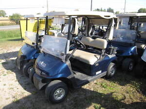 SALE! 2008 EZGO RXV 48v Electric Golf Cart Patriot Blue Kitchener / Waterloo Kitchener Area image 3