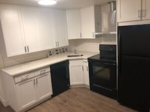 Brand New Full Basement Suite with Laundry!