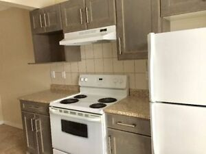3bedroom Townhomes-Backyard-April free & May half free-Millwoods