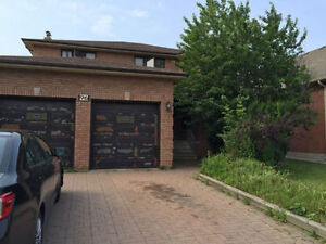 2 Bedroom Wonderful Large Basement apartment in Great area