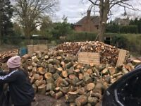 Seasoned logs for sale Hampshire and West Sussex