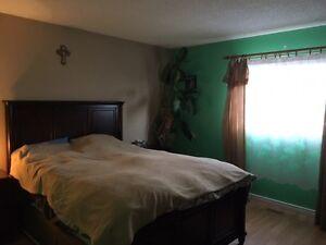 3 Bedroom 4 Level Split Edmonton Edmonton Area image 6