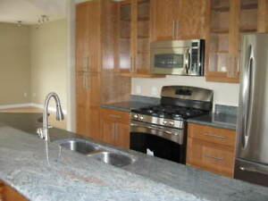 Downtown 2 Bedroom Penthouse Condo Available September 1st.