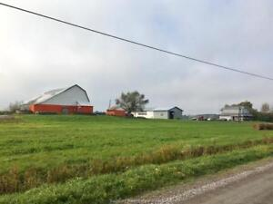 Farm on 265 Acres in St Charles