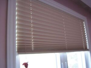 Pleated Shade for window *Moving*