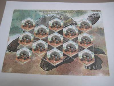 2008 Beautiful India Sheetlet On Aldabra Giant Tortoise   Mnh