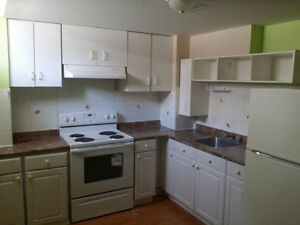 Separate bright basement apartment for rent