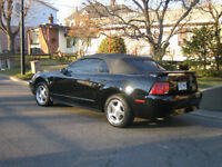 Ford Mustang Cabriolet 2001