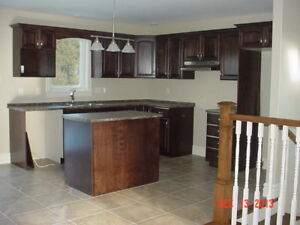 4-BEDROOM HOME FOR SALE - FINISHED BASEMENT WITH FULL WALK OUT.