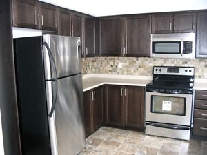 Beautiful 3 Beds+1.5 bath 2 storey condo in Kitchner for 1st Dec