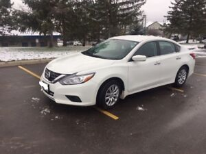 2017 Nissan Altima. Lease Takeover. get $1000 cash incentive