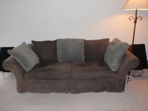 sofa  / pull out bed