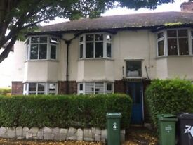 1 Large double bedroom available in Walthamstow village
