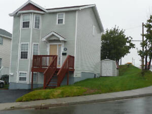 Fully Furnished House for Rent near Avalon Mall