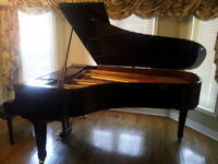PIANO, VIOLIN and VOICE lessons