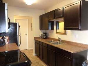 2 bedroom furnished apartment in Logan Lake