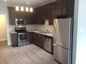 NEW 1 plus den apartment with lake view - 50 year PLUS !