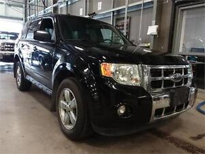 2009 Ford Escape Limited 4WD! Leather! Heated Seats! Sunroof!