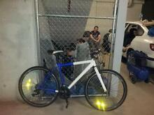 used bicycle good conditions Dulwich Hill Marrickville Area Preview
